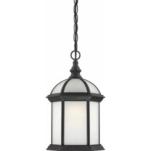 Deals Toby 1-Light Outdoor Hanging Lantern By Charlton Home