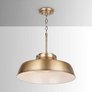 Oma 1-Light Dome Pendant