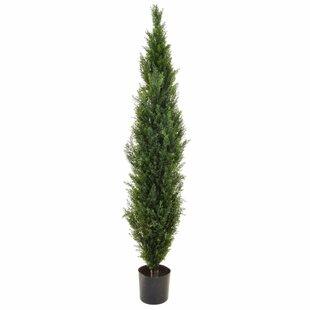 Artificial Cedar Pine Tree By The Seasonal Aisle