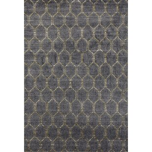 Dossantos Geometric Gray Stain Resistant Indoor Outdoor Area Rug