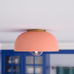 Turn on the Brights Walter 1-Light Flush Mount