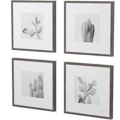 Terrific Mercury Row Cacti Types Quadriptych 4 Piece Framed Graphic Inzonedesignstudio Interior Chair Design Inzonedesignstudiocom