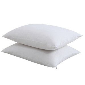 Anti-Microbial Pillow Protector (Set of 2) by Fresh Ideas