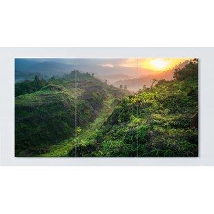Rainforest Motif Magnetic Wall Mounted Cork Board By Ebern Designs