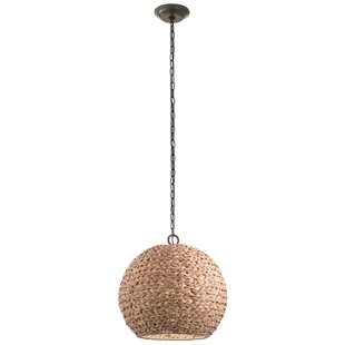Savings Durrant 1-Light Transitional Outdoor Pendant By Mistana