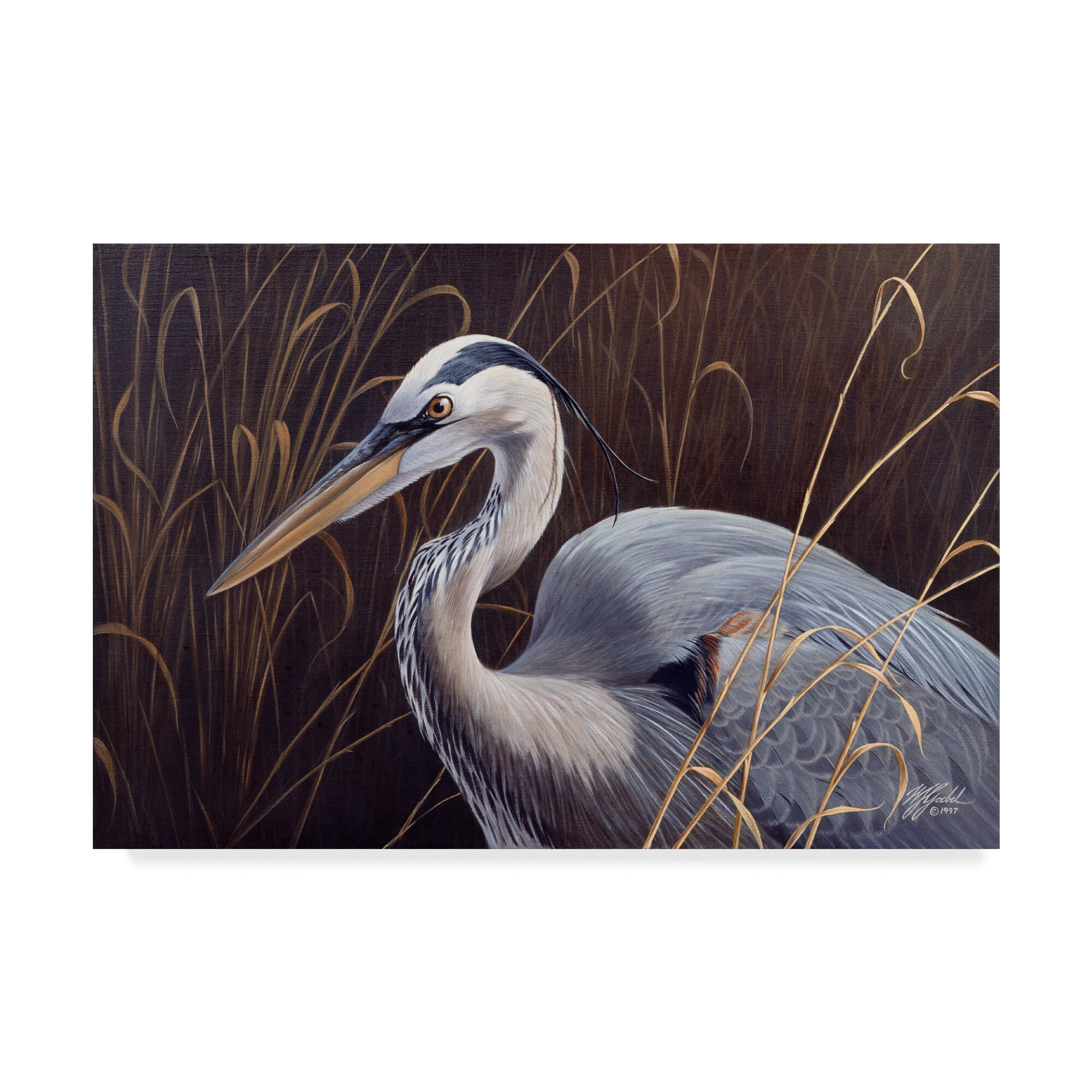 Great Blue Heron Acrylic Painting Print On Wrapped Canvas