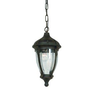 Astoria Grand Huntington 1-Light Outdoor Hanging Lantern