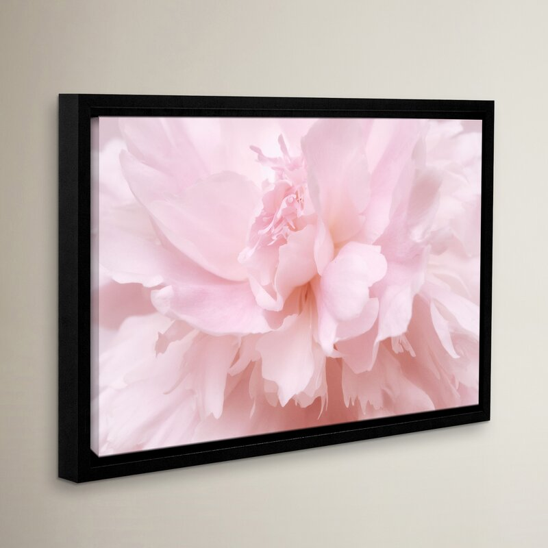 One Allium Way Pink Petals 2 Framed Photographic Print Wayfair