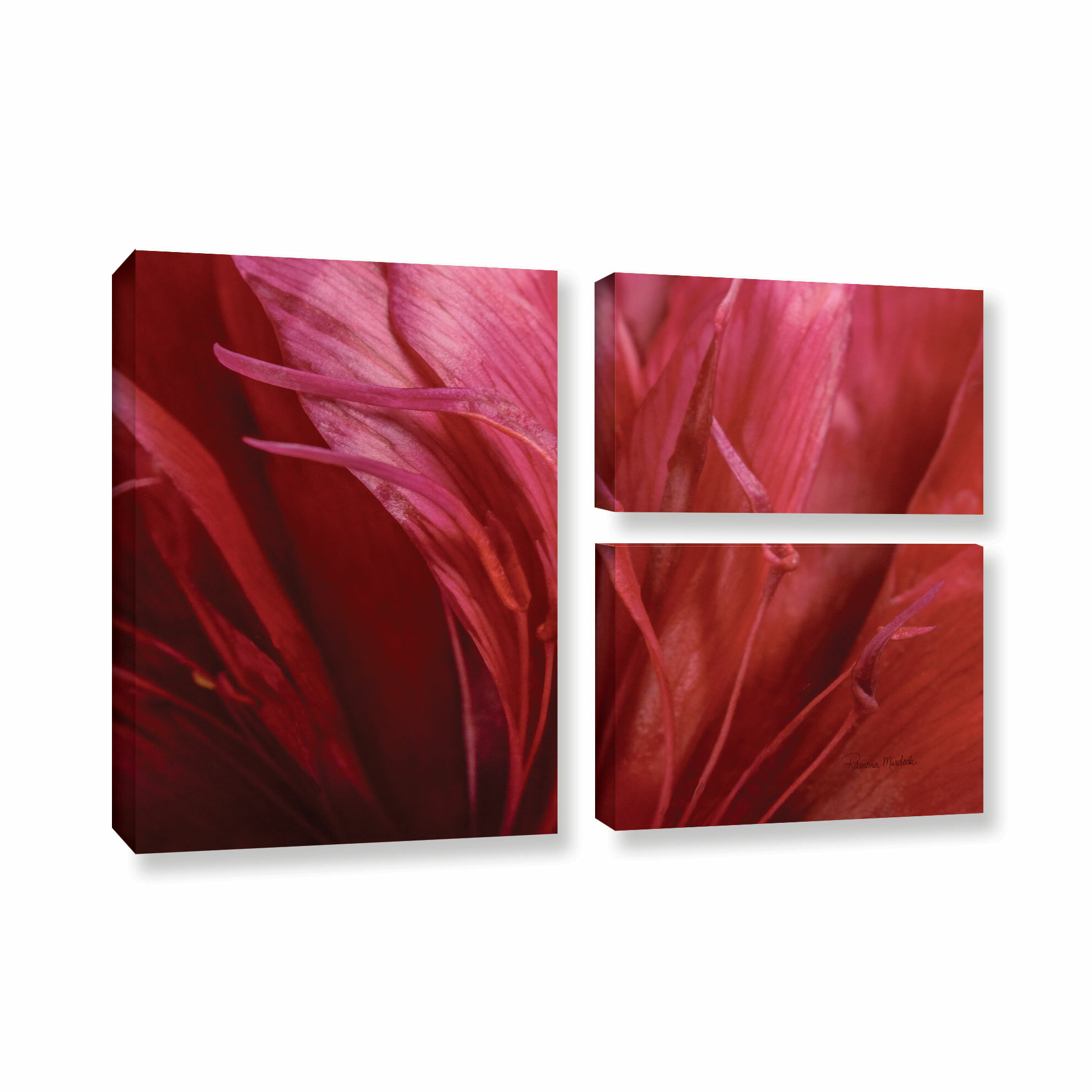 Latitude Run Peonia Insight Ii 3 Piece Photographic Print On Gallery Wrapped Canvas Set Wayfair