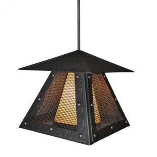 Reviews Rogue River 1-Light Outdoor Hanging Lantern By Steel Partners