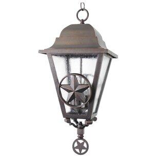 Alcott Hill Penfield 3-Light Outdoor Hanging Lantern
