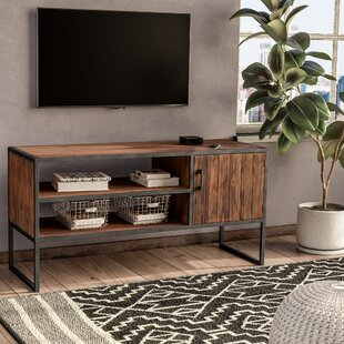 Guide to buy Annetta Media TV Stand for TVs up to 58 by Union Rustic Reviews (2019) & Buyer's Guide