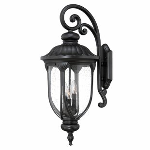 Reviews Angie Outdoor Wall Lantern By Fleur De Lis Living