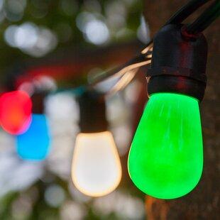 Wintergreen Lighting 24-Light Globe String Lights