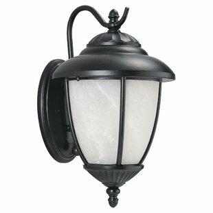 Bloomsbury Market Nicollet 1-Light Outdoor Wall Lantern