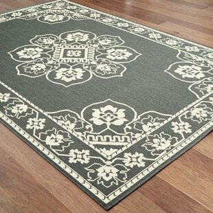 Salerno Floral Medallion Gray/Ivory Indoor/Outdoor Area Rug