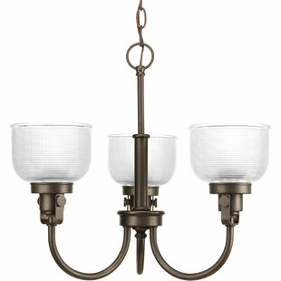 Beachcrest Home Gotha 3-Light Shaded Chandelier