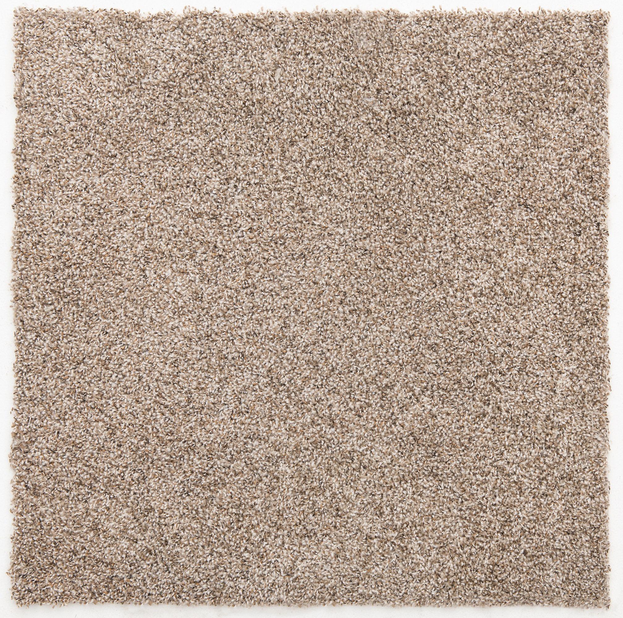 Plush Cut Carpet Tile