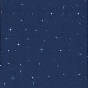 Kids World Starfleet Stars 33' x 20.5 Wallpaper