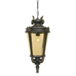 Vencimont 1 Light Outdoor Hanging Lantern By Sol 72 Outdoor