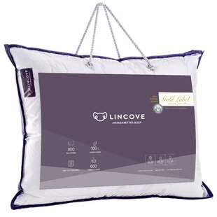 Goose Medium/Firm Down Pillow (Set of 2)