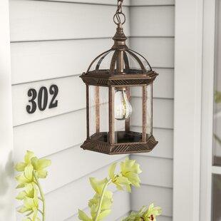 Astoria Grand Caroline 1-Light Outdoor Hanging Lantern