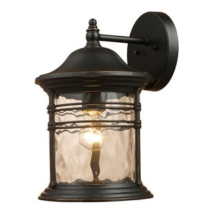 Alcott Hill Heimbach 1-Light Outdoor Wall Lantern