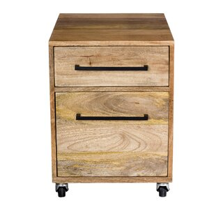 Union Rustic Shery 2-Drawers Mobile Verti..