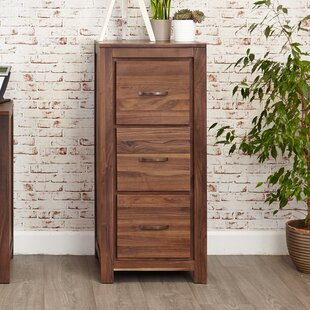 Emmalynn 3-Drawer Vertical Filing Cabinet By Ebern Designs