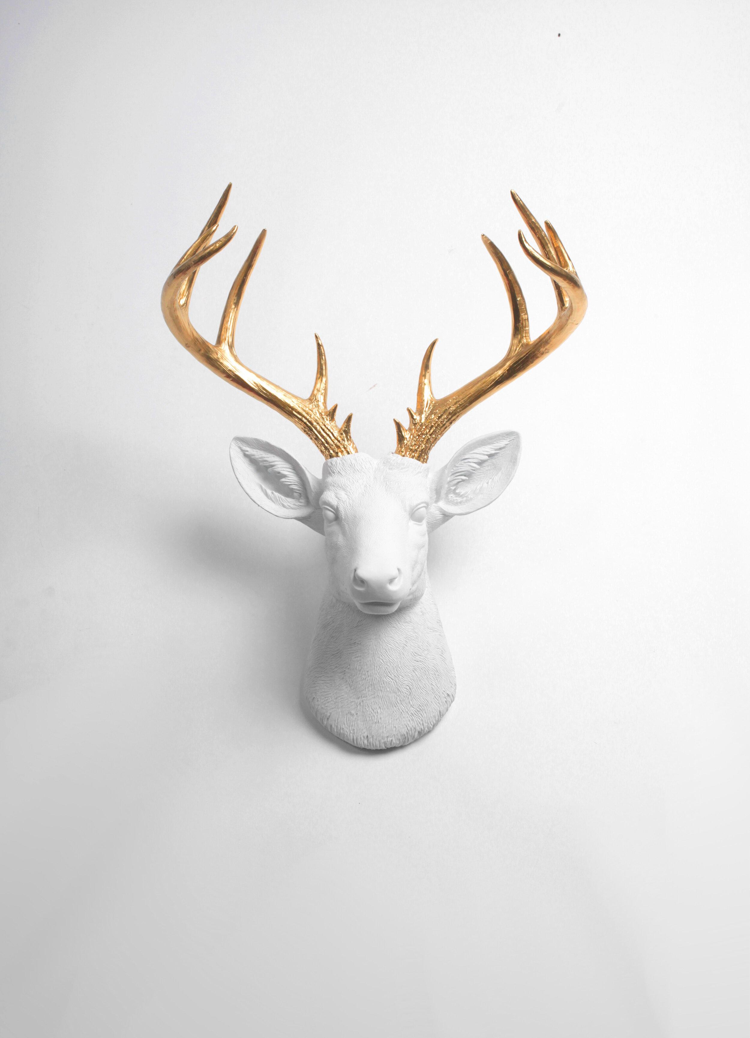 amazing Deer Head Wall Decor Part - 1: Foundry Select Modern Deer Head Wall Decor u0026 Reviews | Wayfair
