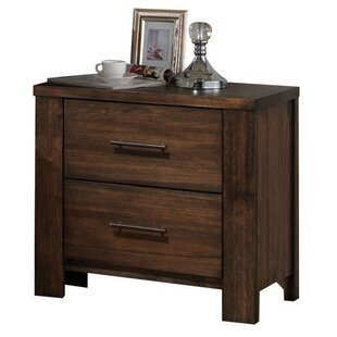 Schlesinger 2 Drawer Nightstand by Latitude Run