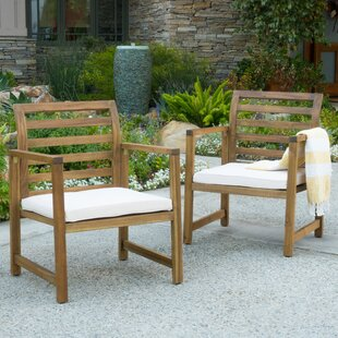 Gaynelle Outdoor Arm Chair with Cushion (Set of 2)