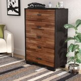 Bair 5 Drawer Chest by Wade Logan®