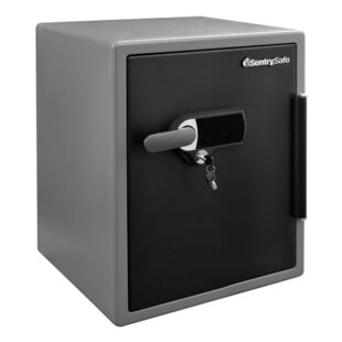 Affordable Security Safe with Dual Lock by Sentry Safe