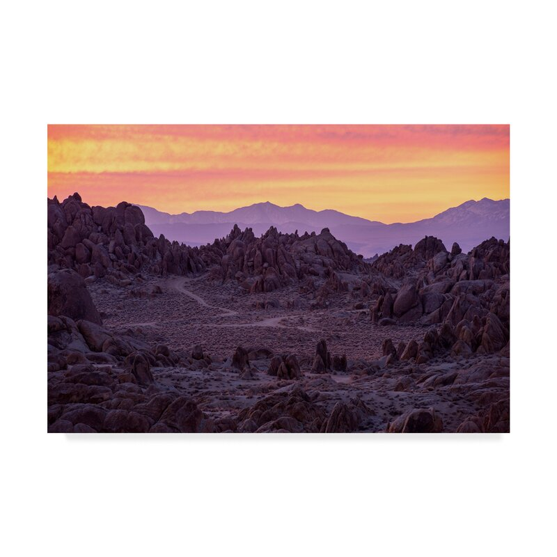 Trademark Art Surreal Dawn Photographic Print On Wrapped Canvas Wayfair