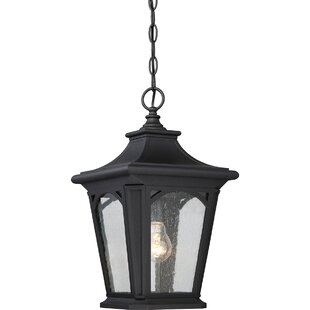 Wardingham 1 Light Outdoor Hanging Lantern By ClassicLiving