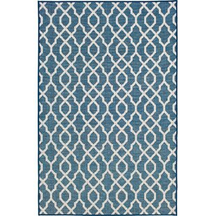 Cassandra Grace Navy Indoor/Outdoor Area Rug