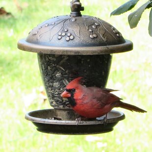 Perky Pet Gilded Chalet Hopper Bird Feeder