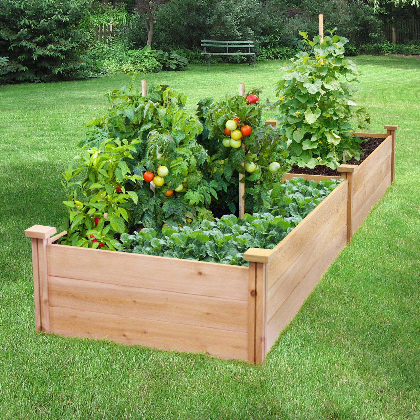 Freeport Park Gabler 2 Ft X 8 Ft Cedar Wood Raised Garden Reviews