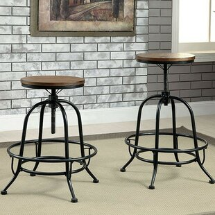 Dupuy Adjustable Height Swivel Bar Stool (Set of 2)