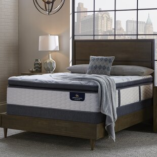 Serta Perfect Sleeper 14