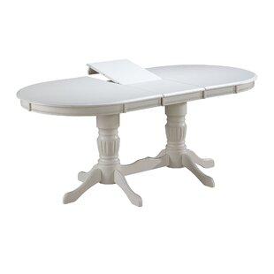 Thibaut Extendable Dining Table By Fleur De Lis Living