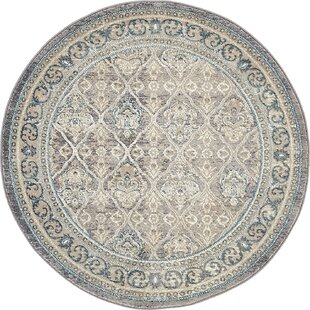 Kerensa Gray/Silver Area Rug by Birch Lane™ Heritage