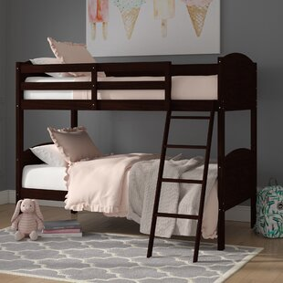 Reviews Romo Twin over Twin Bunk Bed by Viv + Rae Reviews (2019) & Buyer's Guide