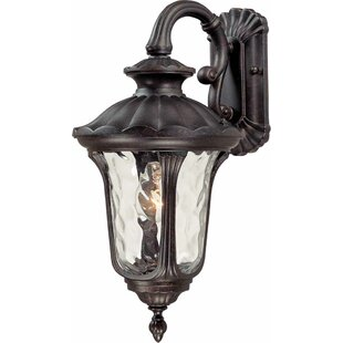 Tavira 1-Light Outdoor Wall Lantern