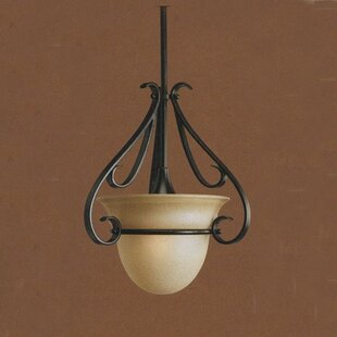 Fleur De Lis Living Lilly 1-Light Urn Pen..