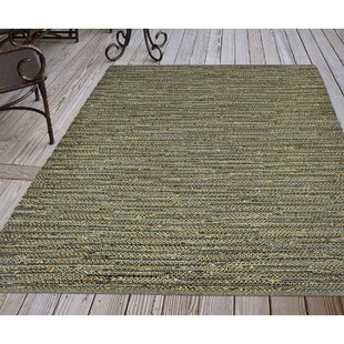 Sardis Hand-Woven Green Indoor/Outdoor Area Rug