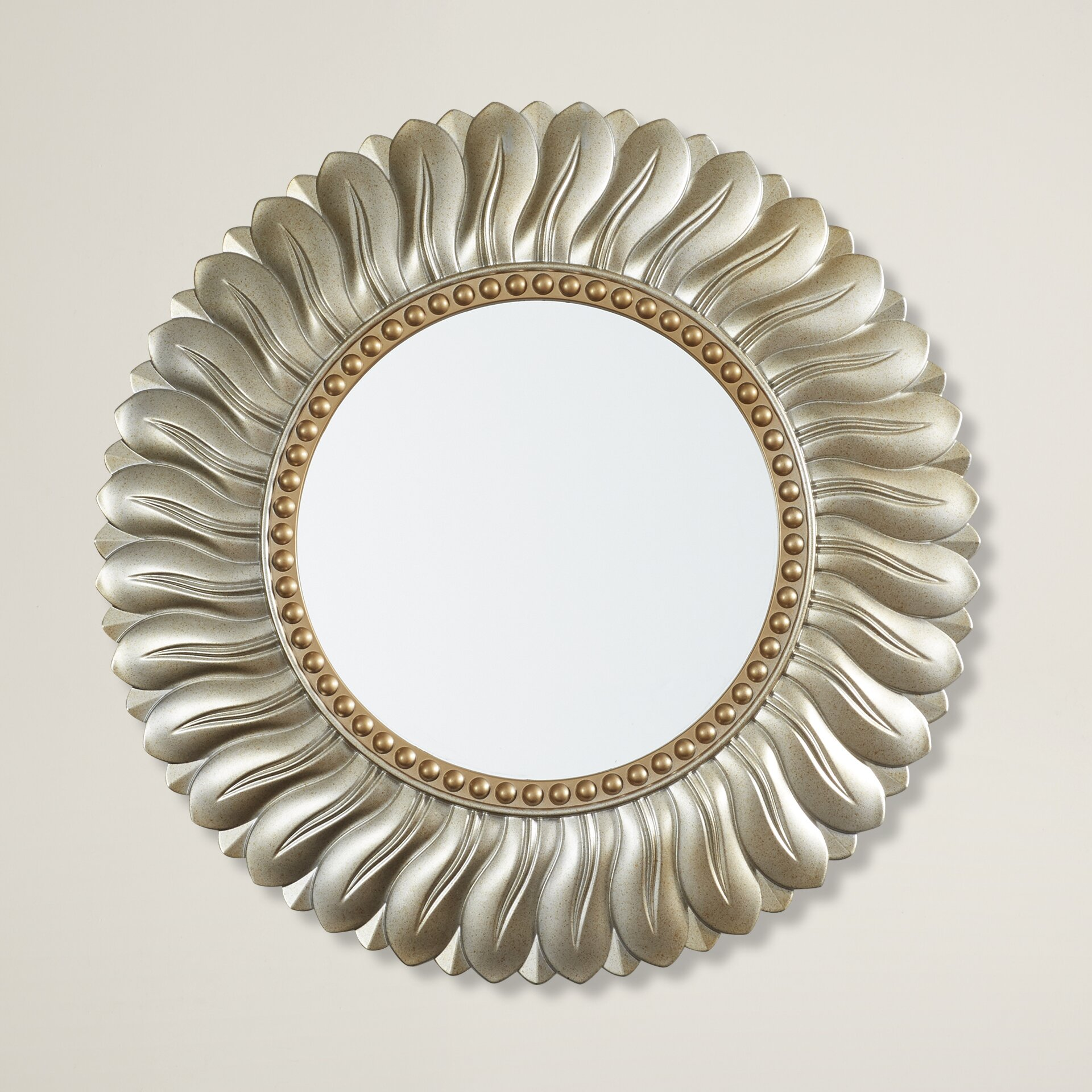 Willa Arlo Interiors Vertical Round Resin Wall Mirror Reviews