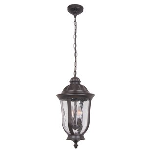 Oakhill 2-Light Outdoor Hanging Lantern
