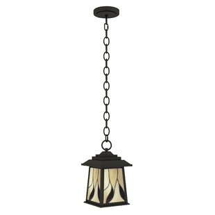 Ethen 1-Light Outdoor Hanging Lantern
